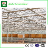 Tipo estufa de vidro de Venlo da multi extensão inteligente para a agricultura/vegetal/flor