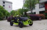 I capretti più poco costosi di prezzi di fabbrica 80cc vanno commerci all'ingrosso di Kart vanno Kart