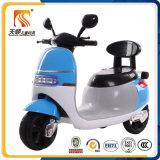 전기 기관자전차 싼 가격이 Tianshun 공장 공급 새 모델에 의하여 농담을 한다