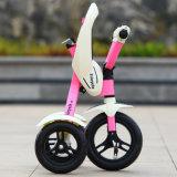 الصين [نو مودل] [فولدبل] جديات درّاجة ثلاثية طفلة عمليّة ركوب على سيّارة 3 عربة ذو عجلات