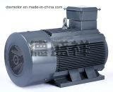 250kw трехфазный асинхронный электродвигатель