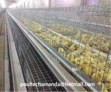La poulette Fram d'automatisation met en cage le matériel (un type le bâti)