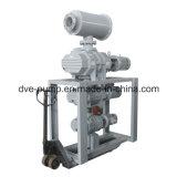 O tratamento térmico industrial do vácuo enraíza os impulsionadores (ZJ-75DV)