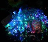 Luz clara decorativa de Digitas da cortina do casamento do Natal da luz da corda do feriado da cachoeira do diodo emissor de luz