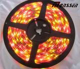 Bicicletta di RGB Ws2811 LED del cambiamento di colore ed indicatore luminoso programmabili della rotella di automobile