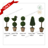 H24cm PE 절묘한 인공적인 장식 정원 나무 상점 훈장