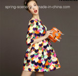 Long Sleeve Print Fashion Girls Dress, Women Clothes (CS-D2098)