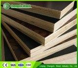 بناء درجة واجه فيلم خشب رقائقيّ من [لينقينغ] مصنع