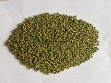 3.2ミリメートル萌芽グリーン緑豆