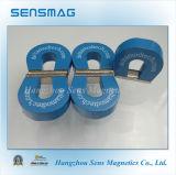 Kundenspezifischer permanenter Magnet des Hufeisen-AlNiCo5