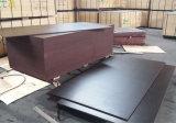 브라운 포플라 코어 필름에 의하여 직면되는 셔터를 닫는 건축재료 합판 (15X1220X2440mm)