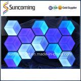 Panneau artistique de mur d'effet de la visibilité 3D décorative d'intérieur/fond DEL de plafond