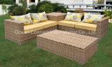 Mobília do vime da resina do sofá do lazer do jardim