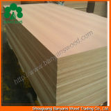 Best Quality를 가진 18mm Wood Veneer Faced MDF Board