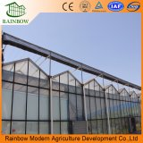 De acero galvanizado marco de acero invernadero de vidrio invernadero / vidrio para la venta