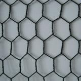 Rete metallica del pollo del PVC/reticolato rivestiti