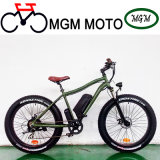 48V Mountain Electric Bicycle