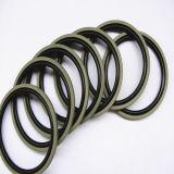 Seals hidráulico para Cylinders/Wear Rings