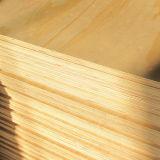 BB / CC Grado Bintangor madera contrachapada para Muebles
