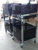 Caixa acrílica cinzenta---Carrinho da estrutura do metal para o descanso/acessórios