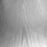 De Ontwerper van het roestvrij staal en Decoratieve Platen