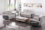 بناء وجلد أريكة مختلطة بيتيّة