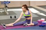 Pantalones atractivos de la yoga de la escritura de la etiqueta privada de la ropa del color al por mayor a granel del contraste
