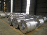 Enroulement en acier de bonne qualité de Galvanzied/Gi (0.13--1.3mm)