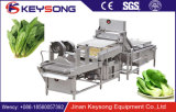 Heiße Verkaufs-Obst- und GemüseWaschmaschine-Luftblase-Waschmaschine