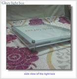 セリウムの公認の天井のハングの水晶LEDのライトボックスの印