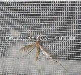 يثنى ذبابة شامة شبكة