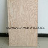 개가시나무 합판 18mm BB/CC E1 1220*2440mm