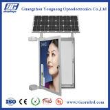 Double éclairage LED moyen solaire latéral Box-SOL-75 de poste de lampe