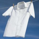 洗濯洗剤の粉末洗剤の洗剤の粉