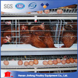 De Batterijkooi van het Landbouwbedrijf van het gevogelte Voor de Vogels van de Kip van de Jonge kip van de Grill van de Laag