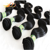 加工されていない7A Remyの毛はベトナムにバージンの毛の編を束ねる