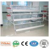Cage de ferme avicole de cage de poulet de couche de batterie pour l'Afrique