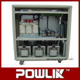 30kVA Intelligent SCR Automatic Voltage Regulator