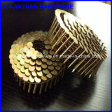 1-1 / 4 '' Coil Roofing Nail / Roofing Coil Nail