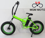 20inch Folding Mountain Electric Bicycle 500W