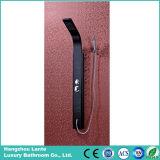 Acero inoxidable Hidroterapia ducha Panel Set (SP-9025)