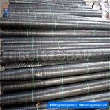 Tissu noir de couvre-tapis tissé par pp de lutte contre les mauvaises herbes
