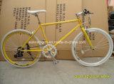700C резвится Bike SR-GW18
