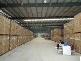 Estructura de acero/almacén/taller ligeros del edificio