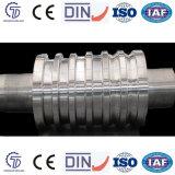 Moinho de rolamento Graphitic Rolls do aço do molde