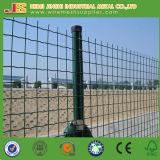 低価格の緑PVC上塗を施してあるオランダ塀