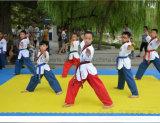 Esteras de ataque del patio de las esteras de la espuma de las esteras de EVA de las esteras de Tatami MMA