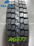 모든 Steel Radial Bus & ECE (11R22.5)를 가진 Tralier Tyre