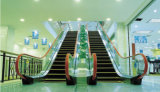 Bon escalator large Semi-Extérieur de 35 degrés des prix 800mm