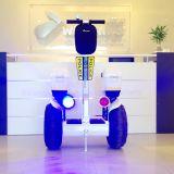 Polizei-elektrischer Kreuzer, Polizei-Kreuzer-Golf-Karre, überwachen elektrischen Roller für den Verkauf polizeilich